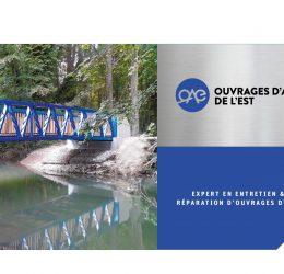 thumbnail of Plaquette-OAE-06-2020